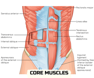 how to build core strength